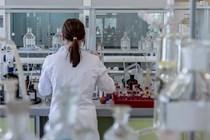 Aprobadas medidas urgentes en el ámbito de la Ciencia, la Tecnología, la Innovación y la Universidad.
