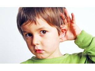 Causas y consecuencias de la sordera