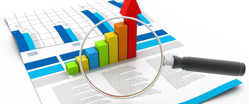 """El concepto """"control interno"""" en informes económico-forenses en la jurisdicción penal en PYMES"""