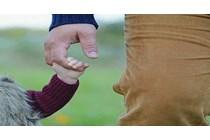 Posibilidad de aplicar la deducción por familia numerosa por un divorciado con tres hijos de matrimonios distintos.
