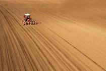 Publicadas las medidas urgentes en materia de agricultura y alimentación