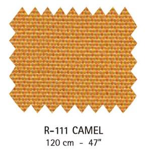 R-111 Camel