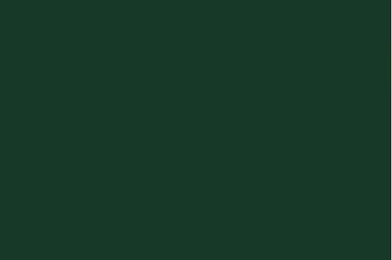 R-166 Verde
