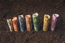 Publicado el salario mínimo interprofesional para 2020