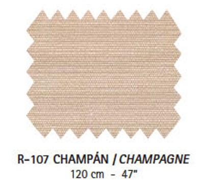 R-107 Champán