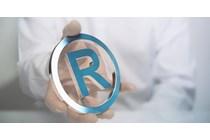 El TGUE anula la resolución de la EUIPO por la que se deniega el registro de una marca figurativa.