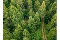 Publicado el I Convenio estatal para el sector de actividades forestales